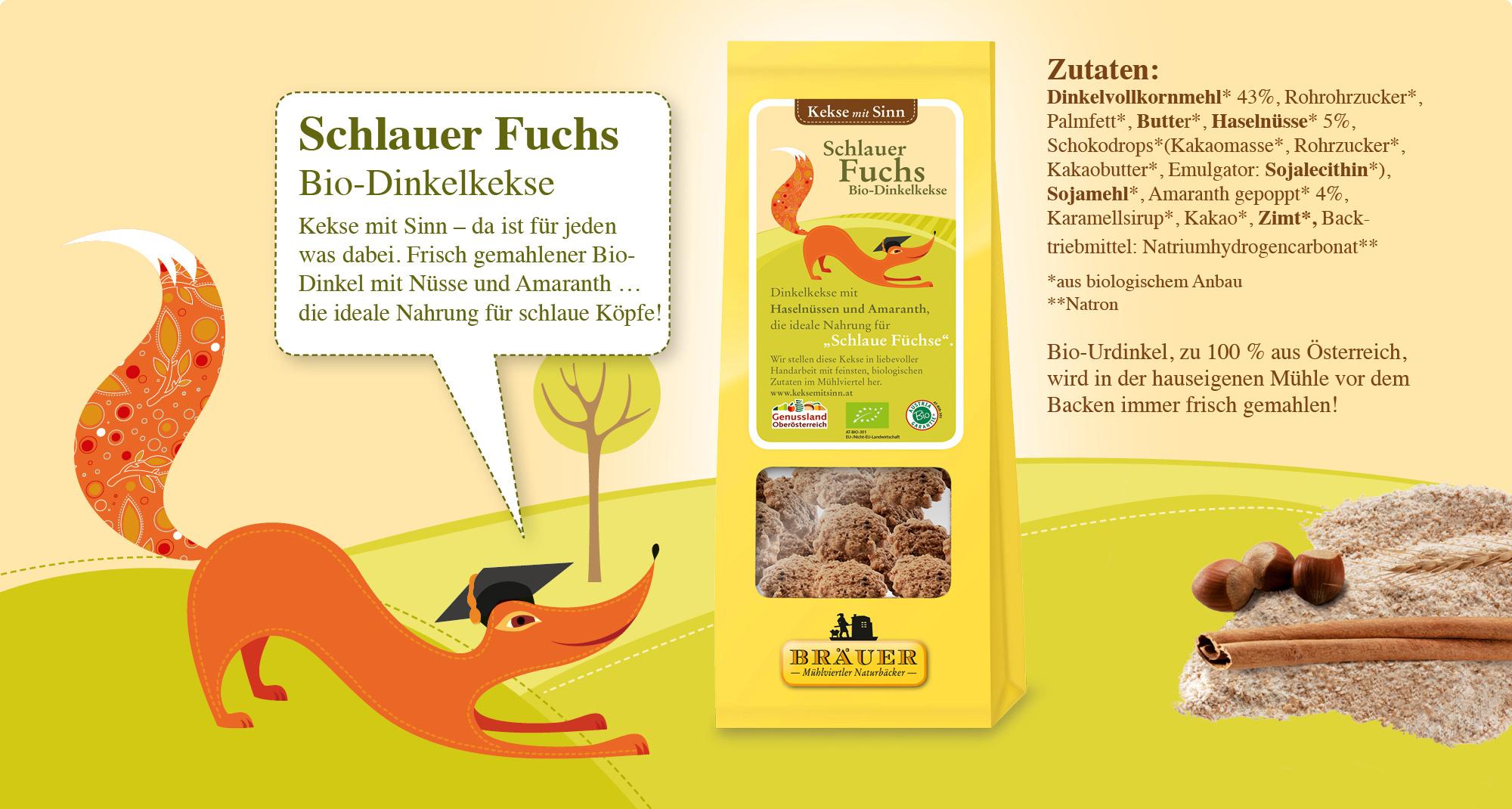 KmS Schlauer Fuchs