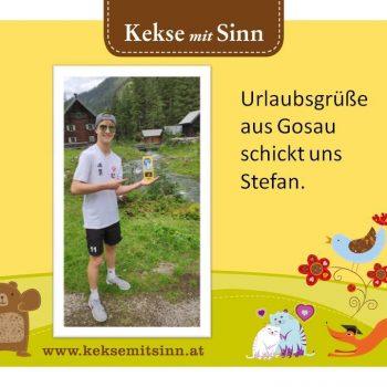 Stefan_Gosau